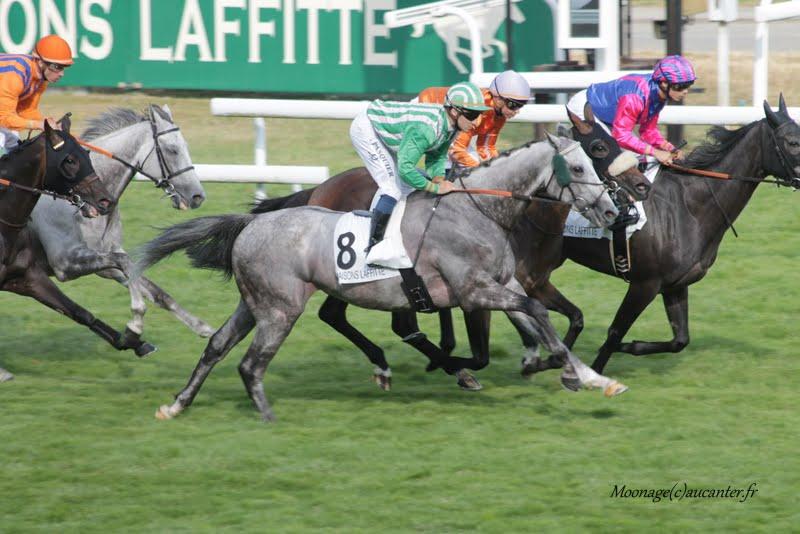 Photos Maisons-Laffitte 5-07-2015 - Page 2 IMG_2632