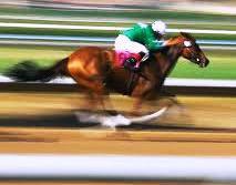 Fancy owning a race horse?