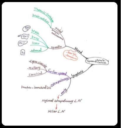mind maps in pathology pdf free