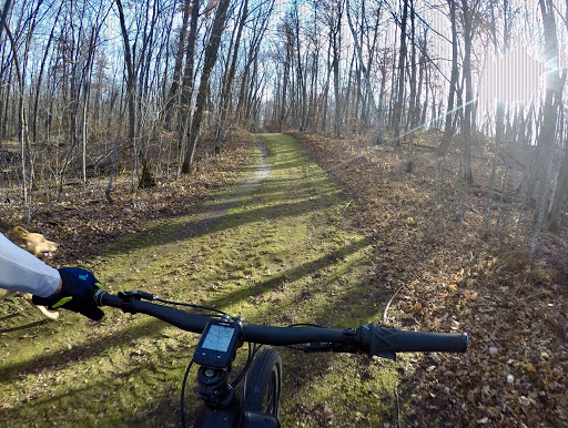 Ski trail riding October 24th, 2016