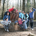 User - Go Ape Feb 2012