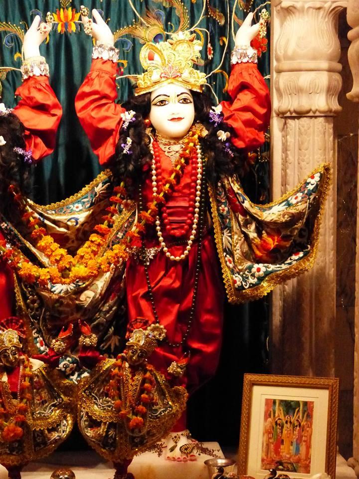 ISKCON New Govardhan Deity Darshan 12 Mar 2016 (16)