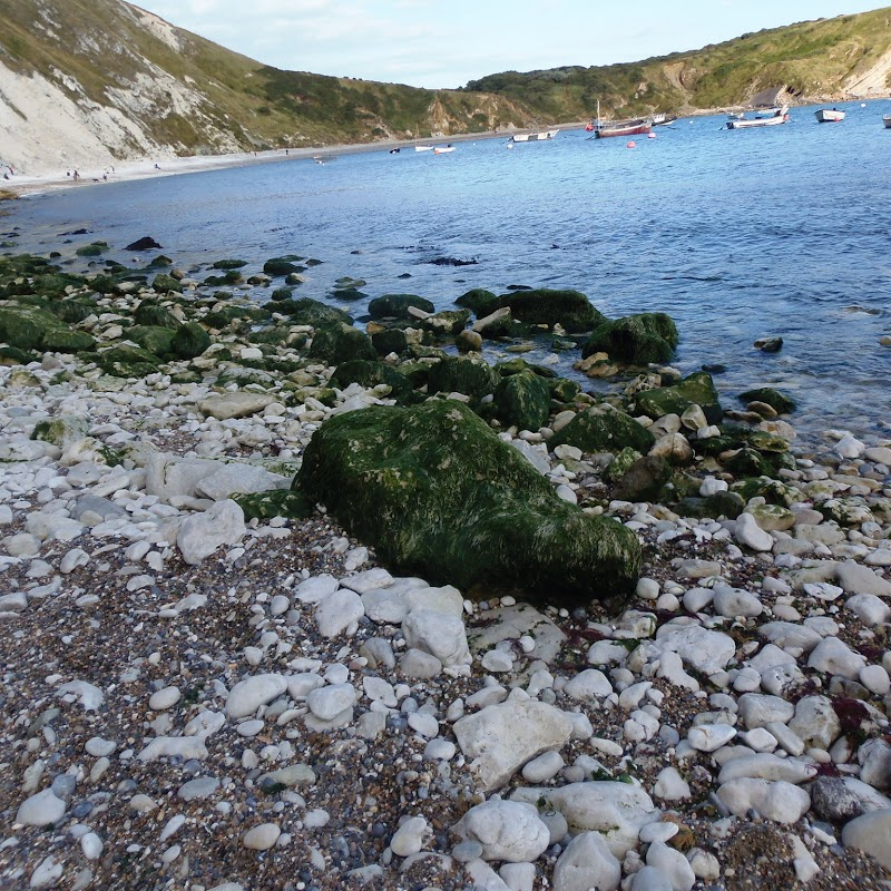 Durdle_Lulworth_67.JPG