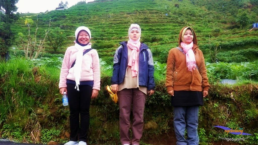 dieng plateau 5-7 des 2014 pentax 47