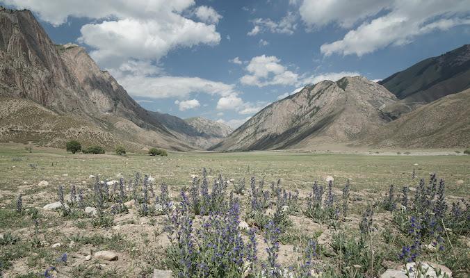 Karge Wiesen und graue Berge im Kurka Tal