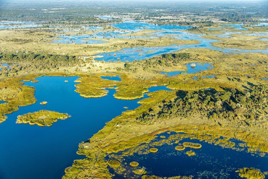 Wetlands, Okavango Delta, Botswana