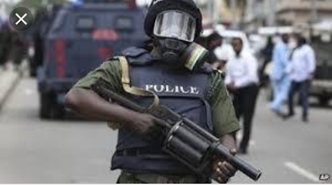 New Police Salary Structure approved by FG