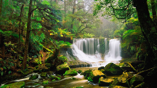 Horseshoe Falls, Mount Field National Park, Australia.jpg