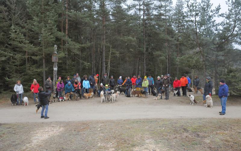20140101 Neujahrsspaziergang im Waldnaabtal - DSC_9907.JPG