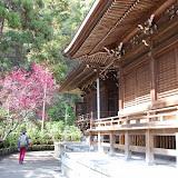 2014 Japan - Dag 7 - jordi-DSC_0244.JPG