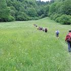 10 giugno 2012 SENTIERO FRASSATI (Da Vigo Lomaso a Lago di Tenno)