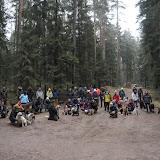 20140101 Neujahrsspaziergang im Waldnaabtal - DSC_9803.JPG
