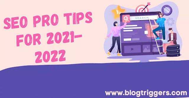 SEO Pro Tips in 2021-2022