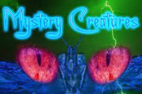 Legend Of New York Cayuga Lake Monster