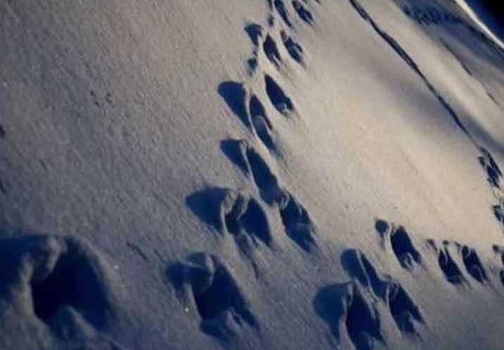 The Mystery of the Devil's Footsteps