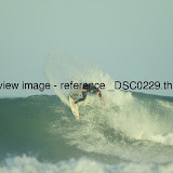 _DSC0229.thumb.jpg