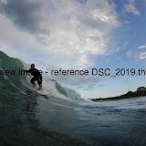 DSC_2019.thumb.jpg