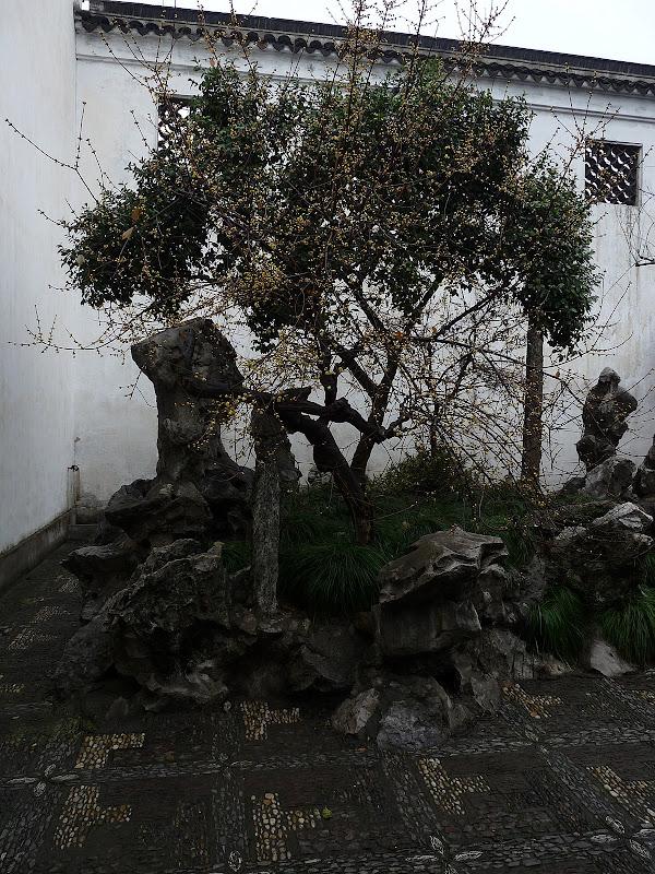 Chine.Shanghai et Suzhou - P1060150.JPG