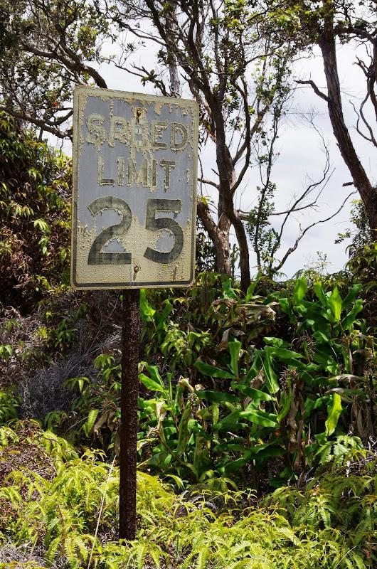 06-20-13 Hawaii Volcanoes National Park - IMGP7815.JPG
