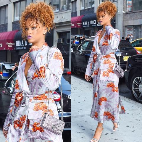Rihanna in Dries Van Noten Daisy Long Robe Dress