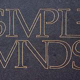Retropop 2014 Simple Minds