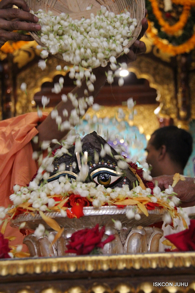 Govardhan Abhishek Darshan  At ISKCON Juhu on 31st Oct 2016 (81)