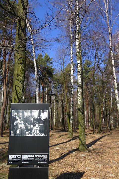 Unter diesen Bäumen warteten viele Juden bevor sie in die Gaskammer gingen