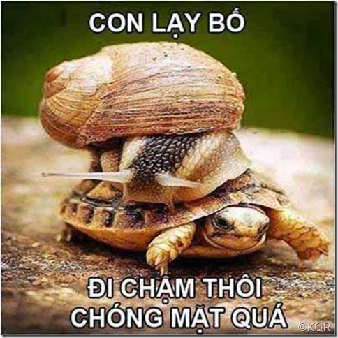 di cham thoi