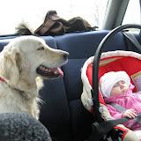 W samochodzie (02.05.2010)