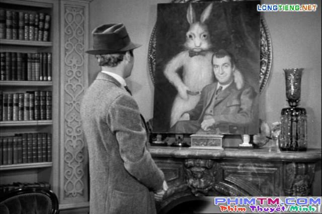 Xem Phim Chú Thỏ Harvey - Harvey - phimtm.com - Ảnh 1