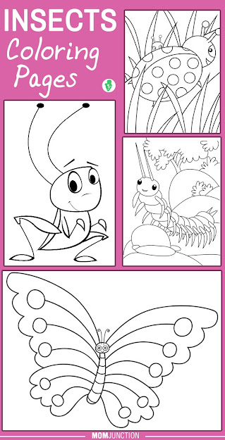 Top  Insects Coloring Pages Your Little Ones Will Love To Colorkids Love  Filling