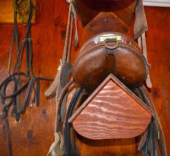Photo: Peter Leone Youth/Pony Saddle