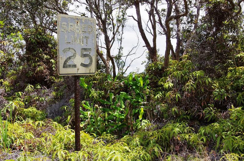 06-20-13 Hawaii Volcanoes National Park - IMGP7817.JPG