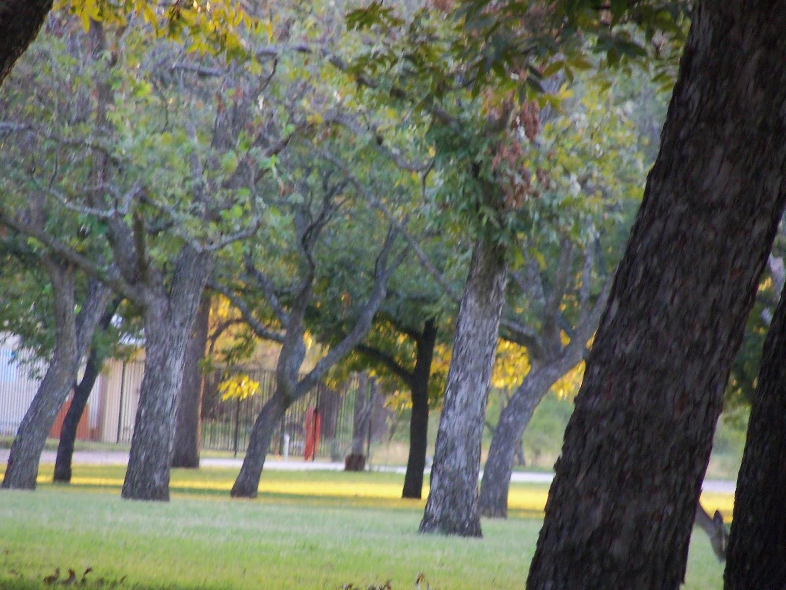 Fall Vacation 2012 - 115_3995.JPG