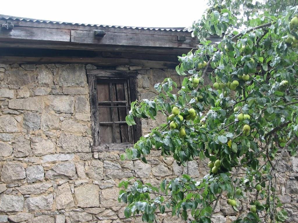 www.ikizdere.net_11