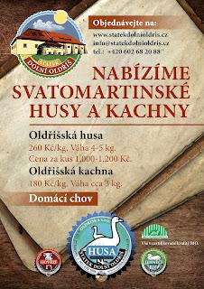 savatomartinska_hua_kachna_rijen_2013