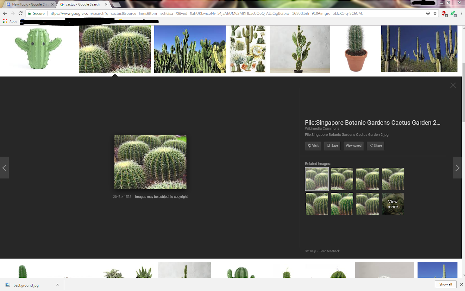 Images - Google Search Help