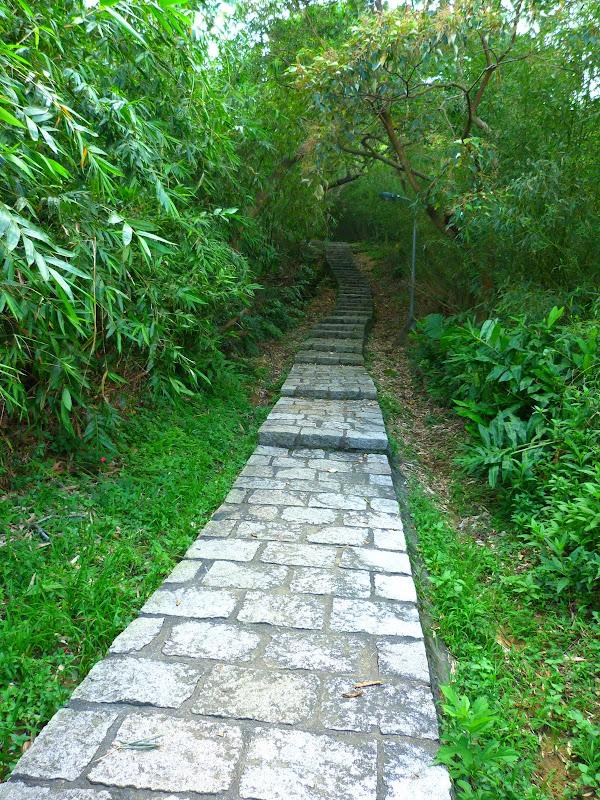 Taipei. Si Shou shan, en plein coeur de Taipei. Accès par un autre chemin moins emprunté. - P1240874.JPG