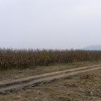 2012 24 octombrie 009.jpg