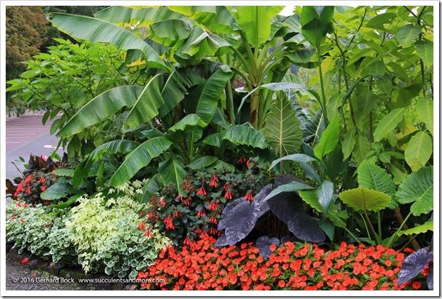 160906_Butchart_Gardens_0011
