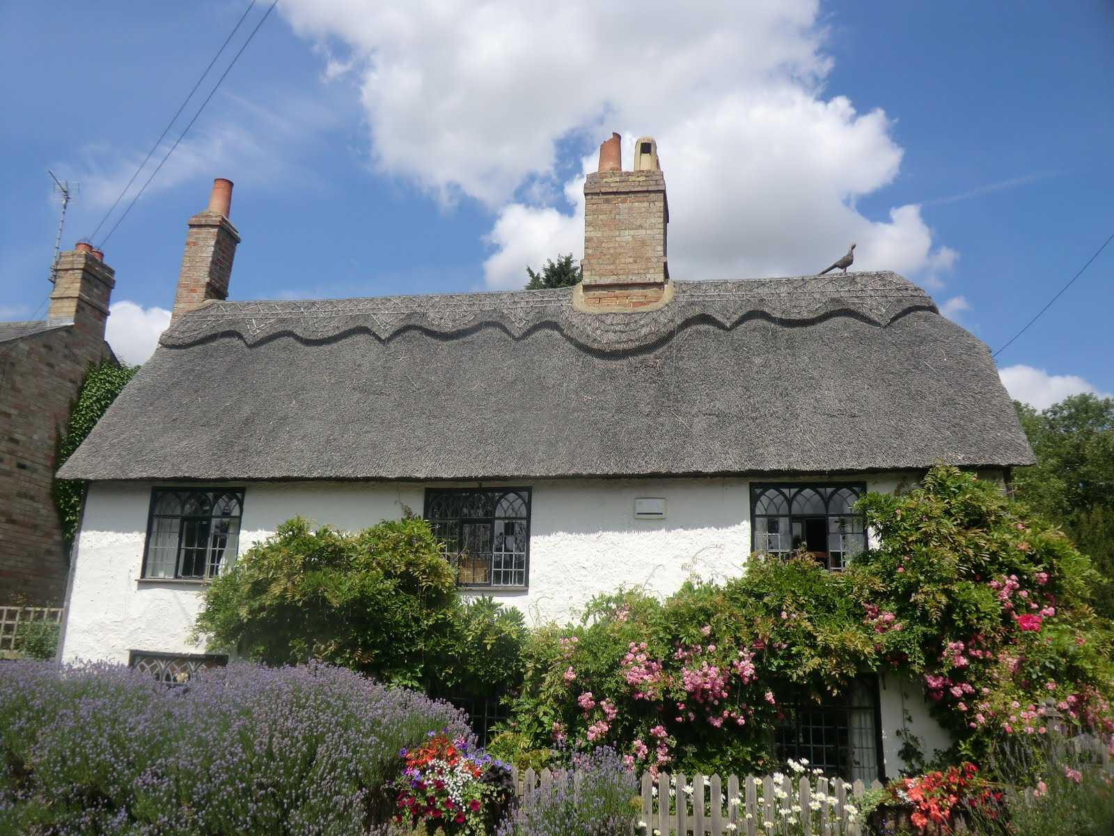 CIMG8914 Cottage, Hemingford Abbots