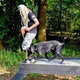 Survival 2014 - DSC_0675.JPG