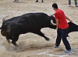 035-peña taurina linares 2014 098.JPG