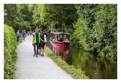 UK Mega 2016 in North Wales - Llangollen - Die Boote werden mit Pferden über den Kanal gezogen