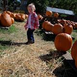 Pumpkin Patch - 115_8233.JPG