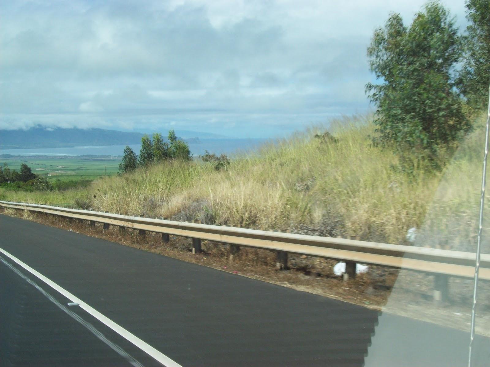 Hawaii Day 8 - 100_8151.JPG