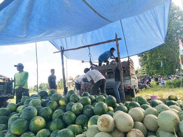 Manfaatkan Lahan Kosong, Petani Desa Manggaris Panen Semangka
