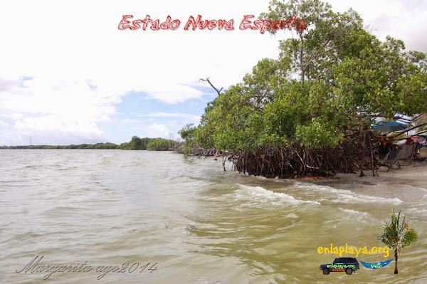 Playa El Oasis NE125, Estado Nueva Esparta, Tubores
