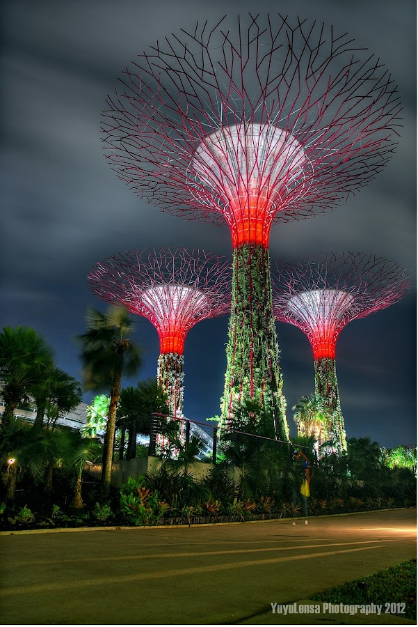 Garden By The Bay by Yusmah Yuyu - Buildings & Architecture Bridges & Suspended Structures