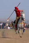 Horse Stunt Punjab.jpg